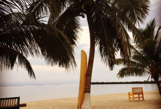 Placencia beach with palm tree and kayak